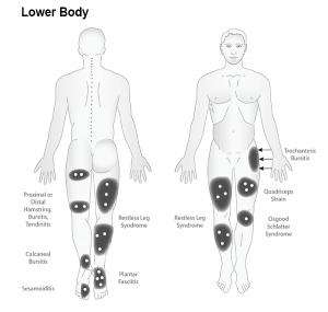 Lower-Body-1