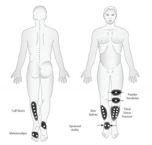 Lower-Body-3