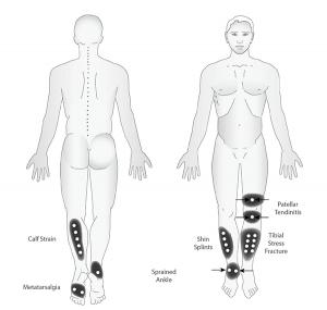 Lower-Body-2