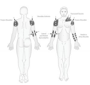 Upper-Body-3