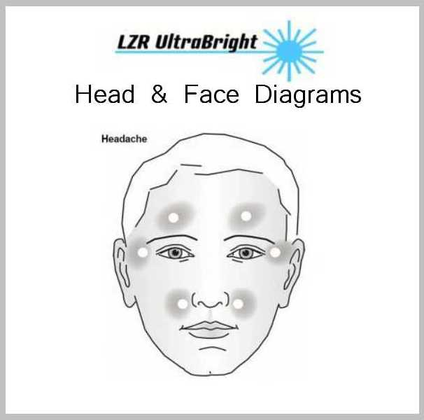 Upper Body Diagrams 2 HEAD AND FACE DIAGRAMS